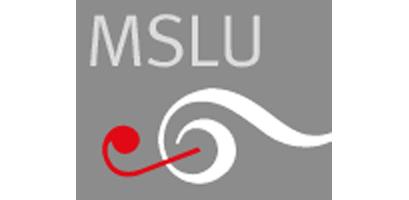 Logo Musikschule Landquart und Umgebung