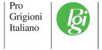 Logo Pgi Coira