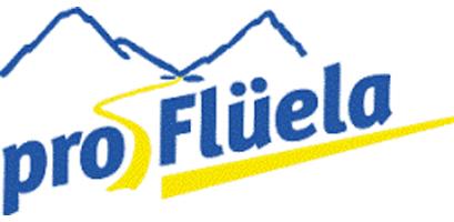 Logo Pro Flüela Davos