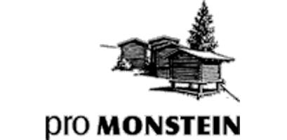 Logo Verein pro Monstein